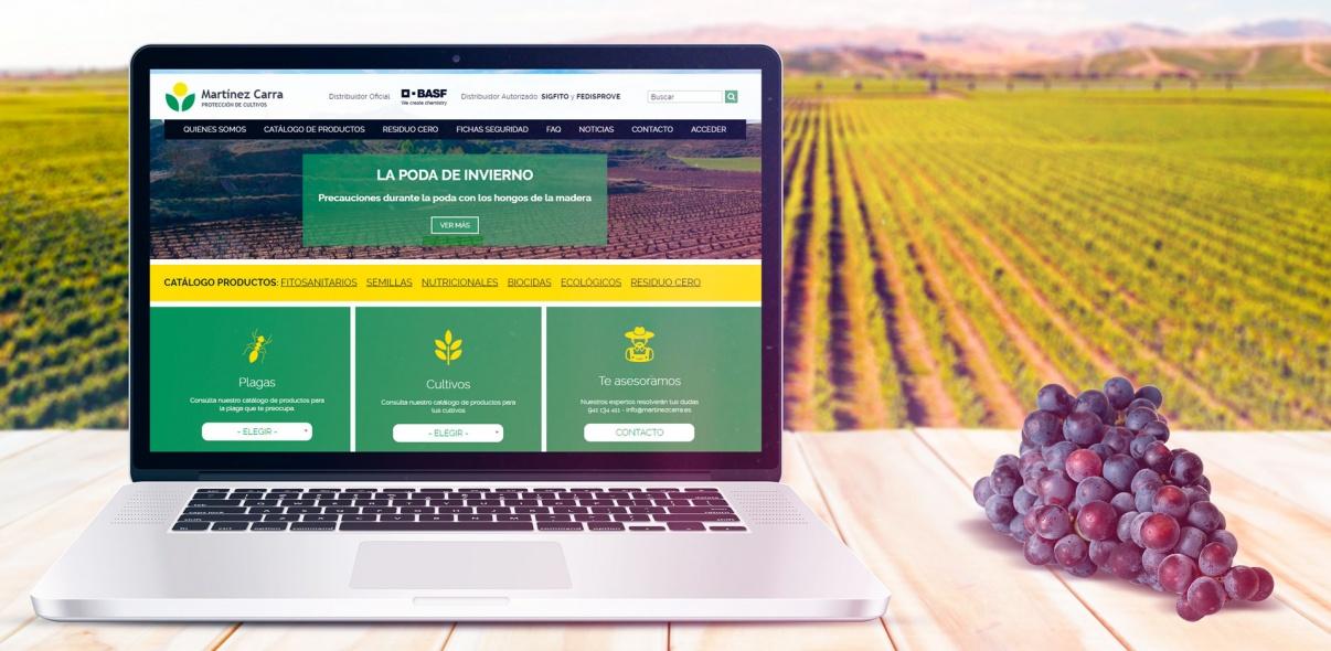 Portal web y catálogo avanzado para Martínez Carra